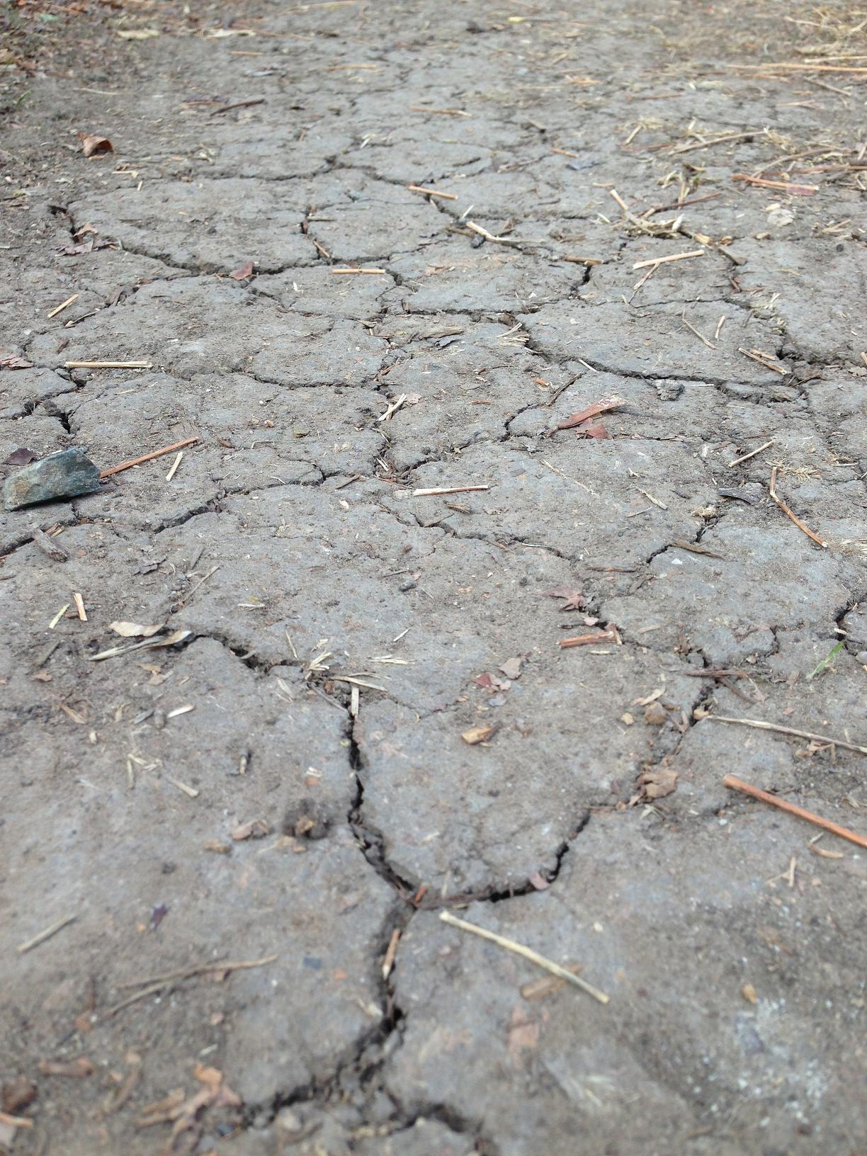 Dry weather effects more than the environment.